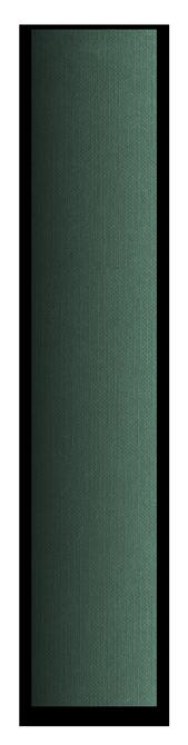 Bande Fastback Vert